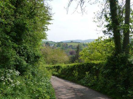 path-1038